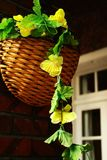 Hanging Flower Basket Royalty Free Stock Photography
