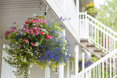 Hanging flower basket Royalty Free Stock Photography