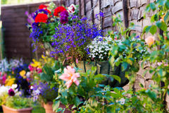 Free Hanging Flower Baskets Stock Images - 76169064