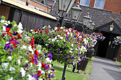 Hanging flower baskets and lamps Royalty Free Stock Photo