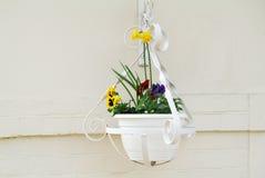 Free Hanging Flower Pot Royalty Free Stock Photos - 30739508