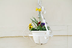 Hanging flower pot Royalty Free Stock Photos