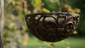 Hanging flower pot small decoration stock video