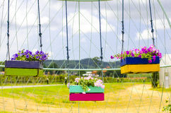 Hanging Flower Pots. In garden Stock Images