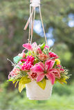 Hanging flower vase and buty. Stock Image