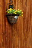Hanging flower on wood wall Royalty Free Stock Photos