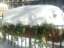 Hanging Flowerbed on Herald Square in Snow. Stock Photo
