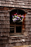 Hanging flowers. A colorful window at a NW restaurant stock image