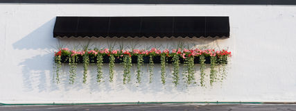 Hanging Flowers with Awning. Black awning over pink petunias and variegated trailing vinca stock photo