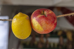 Hanging fruits on string Stock Photos