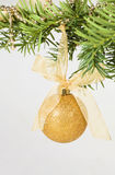 Hanging golden christmas ball. Hanging golden christmas ball on yew branch with decoration Stock Photos