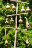 Hanging Gourd Birdhouses Stock Images