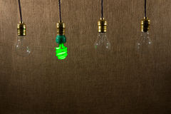 Hanging Green CFL And Incandescent Bulbs Royalty Free Stock Photo