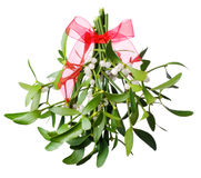 Hanging green mistletoe with a red bow Royalty Free Stock Photos