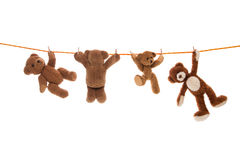Hanging group of teddy bears on a clothing line with pegs. Stock Photo