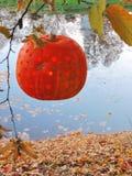 Hanging Halloween pumpkin Royalty Free Stock Photos