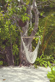 Hanging hammock in the Maldives Royalty Free Stock Image