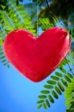 Hanging Heart Royalty Free Stock Photos