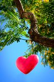 Hanging Heart Royalty Free Stock Images