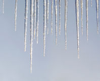 Hanging icicles Royalty Free Stock Photography