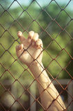 Hanging in jail. Human hand hanging in jail stock photography