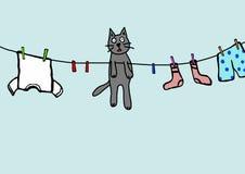 Hanging kitty Stock Photos
