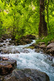 Hanging Lake Stream in Colorado Stock Photo