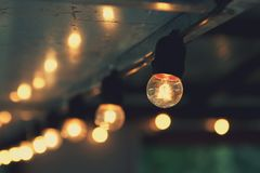 Hanging light bulb indoor. Decorate stock image