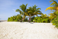 Hanging loungers in the Maldives Stock Image