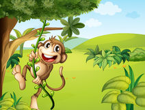 A hanging monkey and a beautiful nature. Illustration of a hanging monkey and a beautiful nature stock illustration