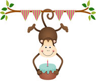 Hanging monkey holding a  birthday cake Stock Photos