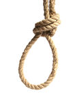 Hanging noose. Isolated on white Stock Image