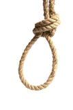 Hanging noose Stock Image