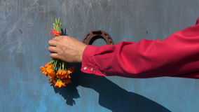 Hanging  old horseshoe and medical herbs flowers on old blue  wall stock footage