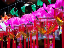 Hanging paper lotus festival lanterns Royalty Free Stock Photos