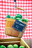Hanging Pepper Basket Royalty Free Stock Photos