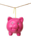 Hanging Piggy Bank Royalty Free Stock Photography