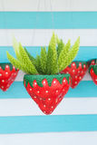 Hanging Plant on red pot Royalty Free Stock Images