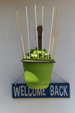 Hanging plant with welcome back sign Royalty Free Stock Photo