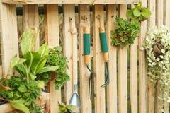 Hanging plant wood panel gardening tools fork, hoe. Hanging plant on wood panel gardening tools fork, hoe stock photos