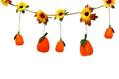 Hanging Pumpkins Stock Photo