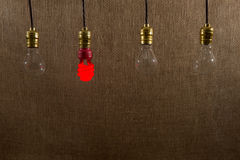 Hanging Red CFL and Incandescent Bulbs Royalty Free Stock Image