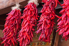 Hanging Red Chile Peppers Royalty Free Stock Image