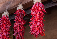 Hanging Red Chile Peppers Stock Photography
