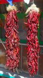 Hanging red chili peppers Royalty Free Stock Photography