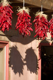 Hanging Ristras Royalty Free Stock Images