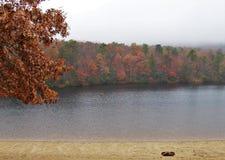 Hanging Rock State Park. Fall foliage under a heavy fog at Hanging Rock State Park near Danbury, North Carolina Stock Image