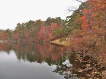 Hanging Rock State Park. Fall foliage under a heavy fog at Hanging Rock State Park near Danbury, North Carolina Stock Photo