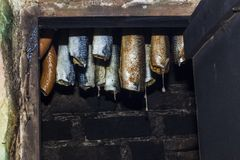 Hanging smoked fish. In smokehouse stock photo
