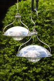 Hanging solar lamps to illuminate garden Stock Image